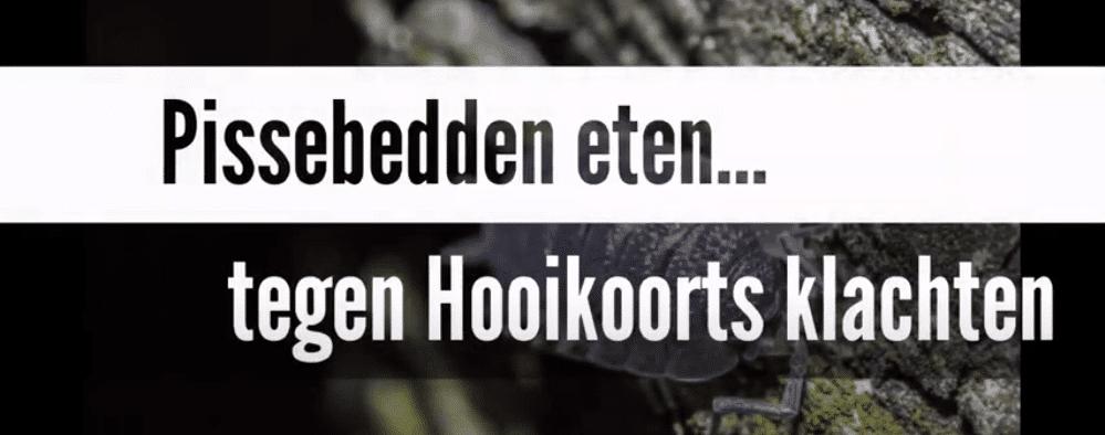pissenbedden eten tegen hooikoorts klachten schijnt te werken.